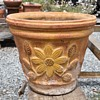 Large Mexican Flower Pot