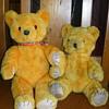 teddy x 2