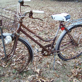 Found These  Bicycles in the Woods by my House