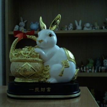 Chinese rabbit - Animals