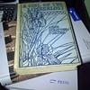 Rare Book - A Girl of The Limberlost... Gene Stratton-Porter
