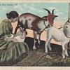 POST CARDS CUBA