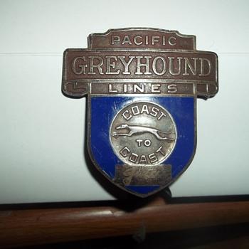 Drivers cap medallion