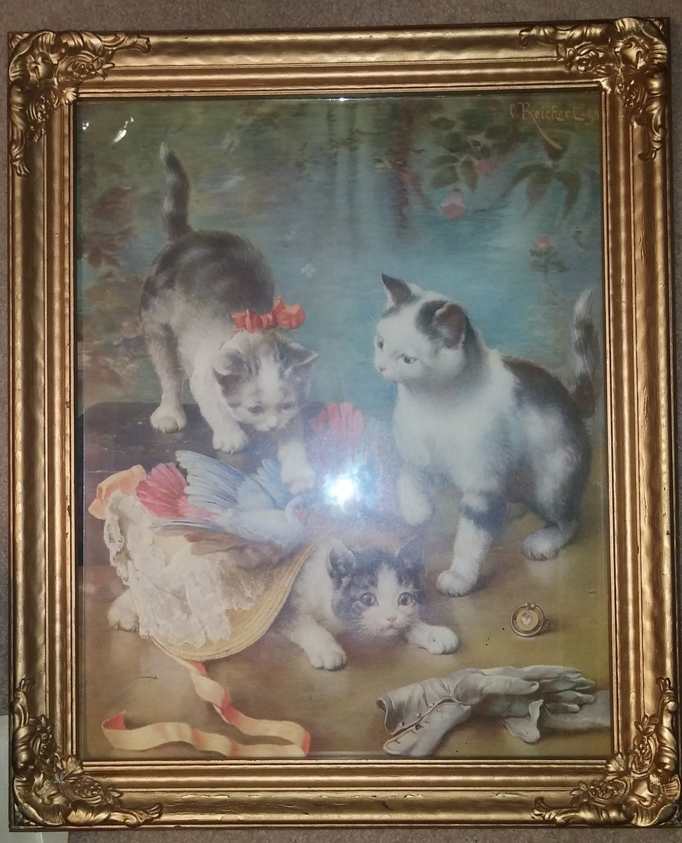Watch Kittens Reichert video