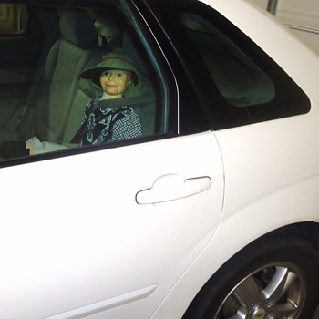 Thank YOU!!! Collectors Weekly!!!  Without You I could not use the Carpool Lane!! Simon Smartest Dummy in the world!!