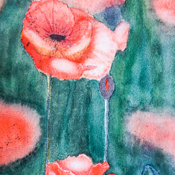 Field of Poppies Watercolor Painting