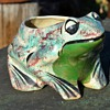 Another Cute Frog Pot - sponge-decorated