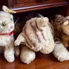 Steiff cats and dogs