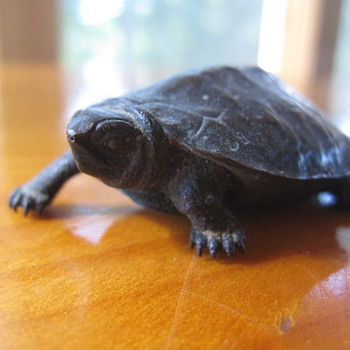 A Signed Turtle Bronze - Asian