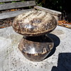 Mushroom Studio work