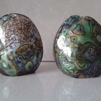 Iridescent Salt and Pepper Pots Paua Shell :) - Kitchen