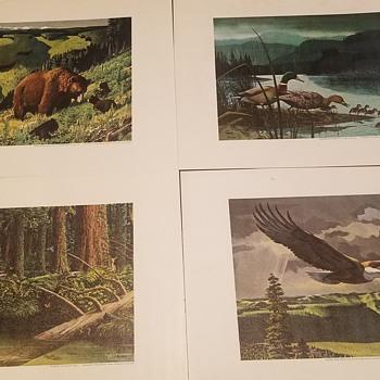1950s Weyerhauser Art Prints - Posters and Prints