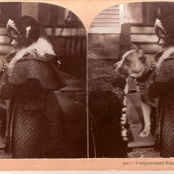 Stereoscopic picture - Photographs