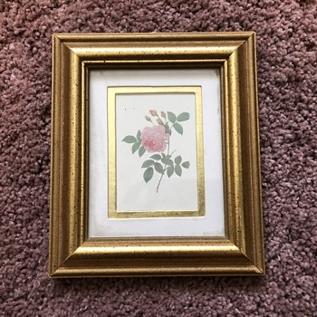 Framed Flower Print, 99¢ Goodwill find - Fine Art