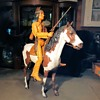 Marx Pinto Horse or Storm Cloud Indian Horse Johnny West Best of the West Plus Find the Hidden Cat