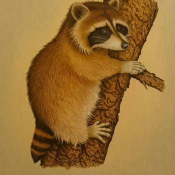The wildlife walls newest addition - Fine Art