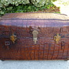 Alligator Covered Portfolio Trunk #1