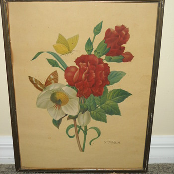 Botanical Prints - Posters and Prints