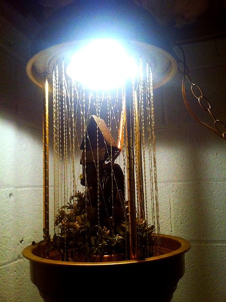 Rain Oil Lamp Rustic Wheel Mill Collectors Weekly