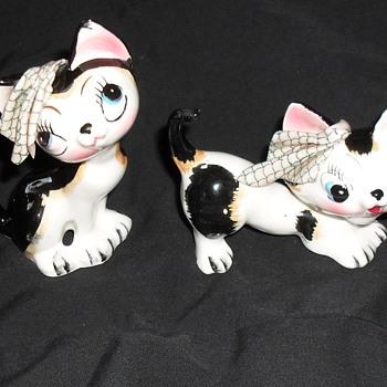 Big eyed kitty cats