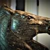 Antique Hand-Carved Wooden Horse Head Hanger