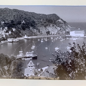 Avalon Harbor on Catalina Island - a large photograph - Photographs