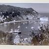 Avalon Harbor on Catalina Island - a large photograph