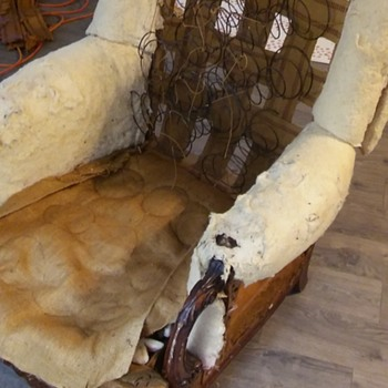 Horses can fly! ( Well---horse hair--in a wing back chair) - Furniture