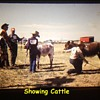 History Captured in Photos..........Small Rural Agricultural Fair ( 1974 ) Post Number # 3