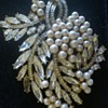 Costume Estate Spray Brooch