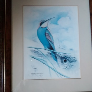 "D.Doody Wildlife artist signed Painting ""Bee-eater"" 87 framed under glass. - Fine Art"