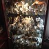 some of my bulldog figurines