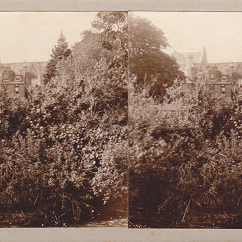 Stereoview - Private26 - Photographs