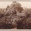 Stereoview - Private26