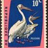 "1963 - Congo Dem. Rep. ""Birds"" Postage Stamps"