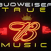 Budweiser True Music Neon