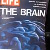 The Brain -- Life Magazine 1971