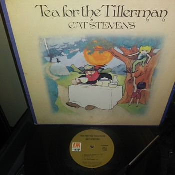 Cat Stevens...On 33 1/3 RPM Vinyl - Records