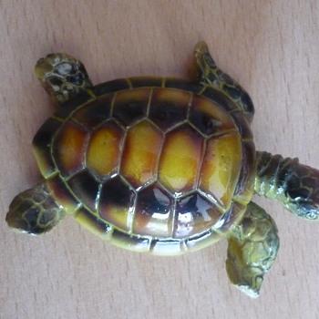 Little Turtle - Animals