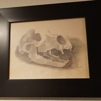 Bear Pencil Drawing by Skipper Tollefson - Fine Art