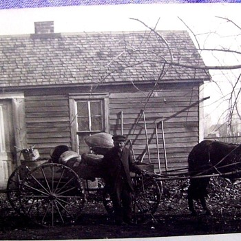 A FEW FAVORITE FARM PHOTOS-SAME FAMILY  **MORE PHOTOS ADDED - Photographs