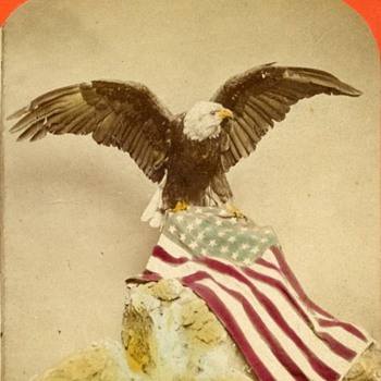 Patriotic Eagle & Flag Hand Tinted Stereoview - early 1870s - Photographs