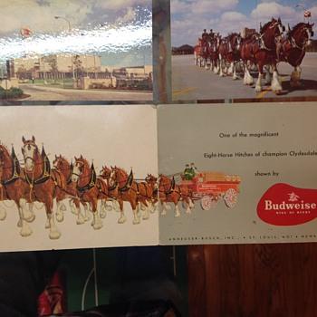Budweiser postcards - Breweriana