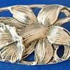 Art Nouveau Sterling (marked) Silver Iris brooch