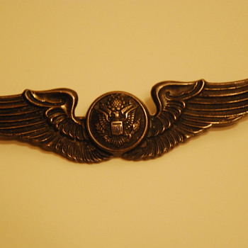 I've had these wings since I was a kid - my father gave them to me.