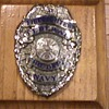 Federal Fire Dept. - Navy - Badge