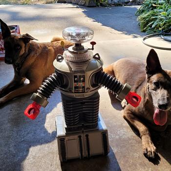 Robot Model B-9 - Toys