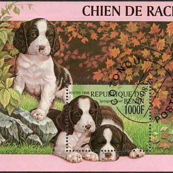 "1998 - Benin - ""Springer Spaniel"" Souvenir Sheet - Stamps"