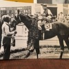 (Assault) King Ranch, Texas Race Horse 1946 Champion Rare Post Card!