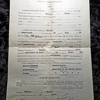 1917 USA Emergency Passport Application for Citizen to leave Austria-Hungary after USA enters WW1 - Paper